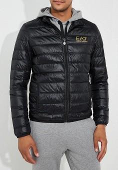 Пуховик, EA7, цвет: черный. Артикул: EA002EMBOAR1. Одежда / Верхняя одежда / Пуховики и зимние куртки / Пуховики
