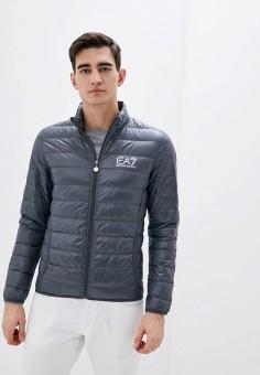 Пуховик, EA7, цвет: серый. Артикул: EA002EMHLFP2. Одежда / Верхняя одежда / Пуховики и зимние куртки / Пуховики