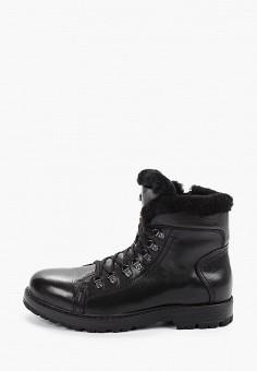 Ботинки, El Tempo, цвет: черный. Артикул: EL072AMFTRY5. Обувь / Ботинки / Высокие ботинки