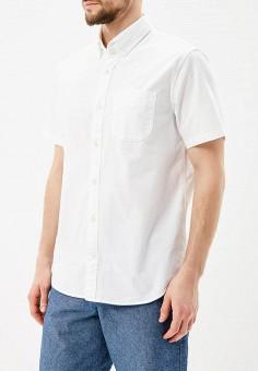 Рубашка, Gap, цвет: белый. Артикул: GA020EMAGWM2. Одежда / Рубашки