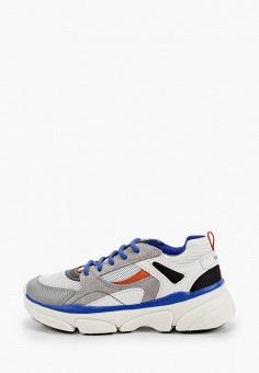 Кроссовки, Geox, цвет: серый. Артикул: GE347ABIEDM3. Мальчикам / Обувь / Кроссовки и кеды