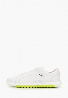 Кроссовки, Geox, цвет: белый. Артикул: GE347AMDMBF3.