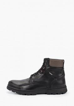 Ботинки, Geox, цвет: черный. Артикул: GE347AMFSLV2.