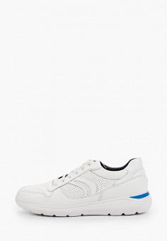 Кроссовки, Geox, цвет: белый. Артикул: GE347AMIEEA6.