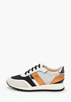 Кроссовки, Geox, цвет: серый. Артикул: GE347AWIECX4.