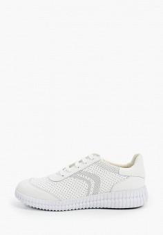 Кроссовки, Geox, цвет: белый. Артикул: GE347AWIEDB7.