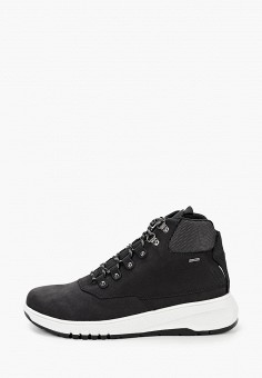 Ботинки, Geox, цвет: черный. Артикул: GE347AWKKQX7.
