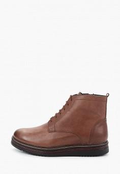 Ботинки, Goodzone, цвет: коричневый. Артикул: GO029AMGHMD6. Обувь / Ботинки