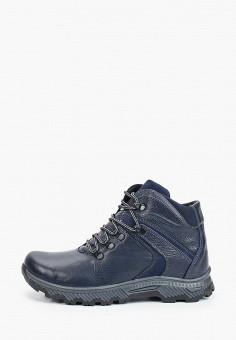 Ботинки, Goodzone, цвет: синий. Артикул: GO029AMGHMG5. Обувь / Ботинки / Низкие ботинки