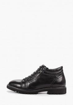 Ботинки, Guido Grozzi, цвет: черный. Артикул: GU014AMGMAO9. Обувь / Ботинки