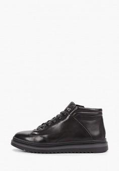 Ботинки, Guido Grozzi, цвет: черный. Артикул: GU014AMGMAP3. Обувь / Ботинки