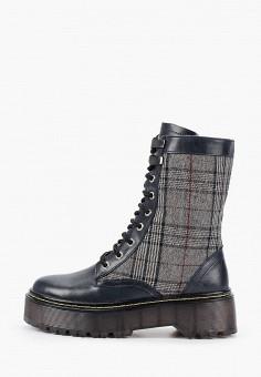 Ботинки, HCS, цвет: синий. Артикул: HC077AWGYRI8. Обувь / Ботинки / Высокие ботинки