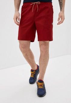 Шорты спортивные, Helly Hansen, цвет: бордовый. Артикул: HE012EMIMFB3.