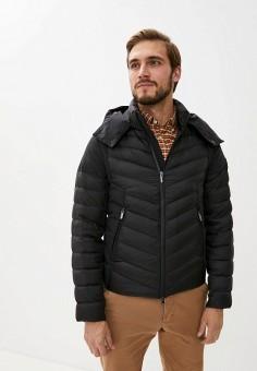 Пуховик, Hetrego, цвет: серый. Артикул: HE832EMKDML1. Одежда / Верхняя одежда / Пуховики и зимние куртки