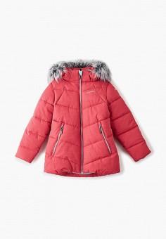 Куртка утепленная, Icepeak, цвет: розовый. Артикул: IC647EGFQCD1. Девочкам / Одежда / Верхняя одежда / Куртки и пуховики