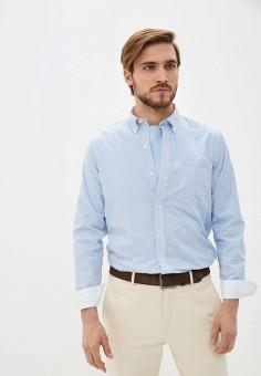 Рубашка, Izod, цвет: голубой. Артикул: IZ003EMHPBH7. Одежда / Рубашки