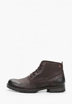 Ботинки, Jack & Jones, цвет: коричневый. Артикул: JA391AMKFPU2. Обувь / Ботинки