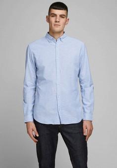 Рубашка, Jack & Jones, цвет: голубой. Артикул: JA391EMIZBG7. Одежда / Рубашки / Рубашки с длинным рукавом