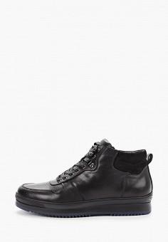 Ботинки, Just Couture, цвет: черный. Артикул: JU663AMFPSK1. Обувь / Ботинки