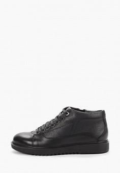Ботинки, Just Couture, цвет: черный. Артикул: JU663AMFPSK5. Обувь / Ботинки / Низкие ботинки