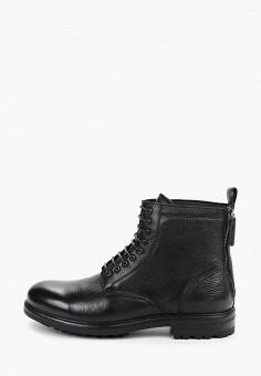 Ботинки, Just Couture, цвет: черный. Артикул: JU663AMFPUZ3. Обувь / Ботинки / Высокие ботинки