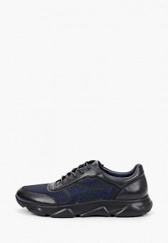 Кроссовки, Just Couture, цвет: синий. Артикул: JU663AMHMAZ9. Обувь / Кроссовки и кеды