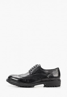 Ботинки, Just Couture, цвет: черный. Артикул: JU663AMKCJR3. Обувь / Ботинки / Низкие ботинки