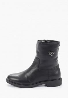 Полусапоги, Just Couture, цвет: черный. Артикул: JU663AWGJAD2. Обувь / Сапоги