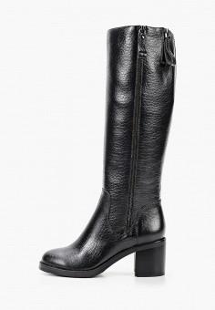Сапоги, Just Couture, цвет: черный. Артикул: JU663AWKCJS6. Обувь / Сапоги