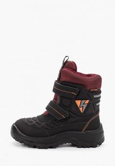 Ботинки, Kakadu, цвет: черный. Артикул: KA036ABGHVU8. Мальчикам / Обувь / Ботинки