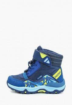Ботинки, Kakadu, цвет: синий. Артикул: KA036ABGHVX0. Мальчикам / Обувь / Ботинки