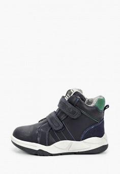 Ботинки, Kenk?, цвет: синий. Артикул: KE009ABJORK5. Мальчикам / Обувь / Ботинки