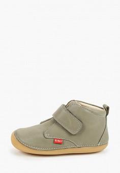 Ботинки, Kickers, цвет: серый. Артикул: KI668ABIPIH2. Мальчикам / Обувь / Ботинки
