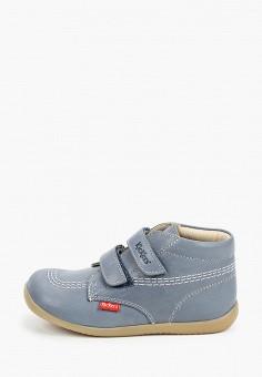 Ботинки, Kickers, цвет: голубой. Артикул: KI668ABIPIK1. Мальчикам / Обувь / Ботинки
