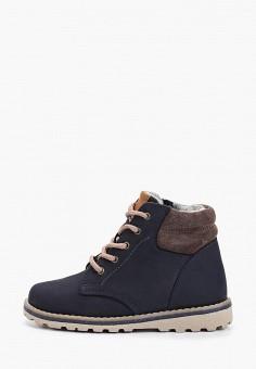 Ботинки, Котофей, цвет: синий. Артикул: KO012ABFWDA2. Мальчикам / Обувь / Ботинки
