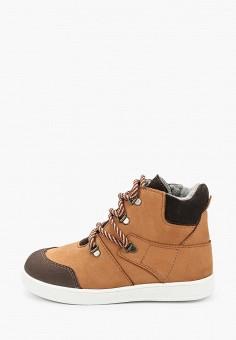 Кеды, Котофей, цвет: коричневый. Артикул: KO012ABJSFB1. Мальчикам / Обувь / Кроссовки и кеды