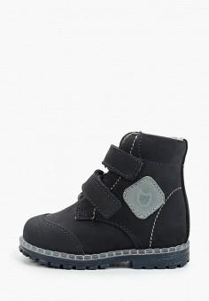 Ботинки, Котофей, цвет: синий. Артикул: KO012ABKDJT2. Мальчикам / Обувь / Ботинки
