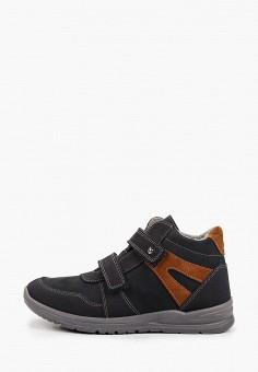 Ботинки, Котофей, цвет: синий. Артикул: KO012ABKDLC4. Мальчикам / Обувь / Ботинки