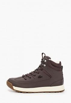 Ботинки, Lacoste, цвет: коричневый. Артикул: LA038AMFQKT8.