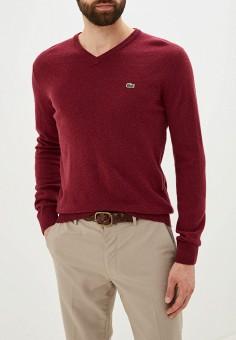 Пуловер, Lacoste, цвет: бордовый. Артикул: LA038EMFQMV9.