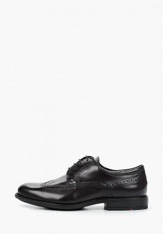 Туфли, Lloyd, цвет: коричневый. Артикул: LL007AMHPPC7. Обувь / Туфли