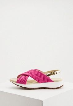 Сандалии, Loriblu, цвет: розовый. Артикул: LO137AWKJAM0. Обувь / Сандалии