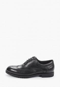 Туфли, Marco Lippi, цвет: черный. Артикул: MA241AMIGLU0. Обувь / Туфли