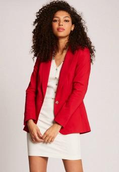 Пиджак, Morgan, цвет: красный. Артикул: MO012EWJTBV3.