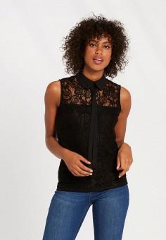 Блуза, Morgan, цвет: черный. Артикул: MO012EWJYDH7.