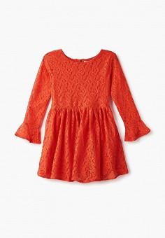 Платье, Modis, цвет: коралловый. Артикул: MO044EGCSWB8.