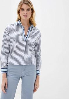 Рубашка, Nice & Chic, цвет: синий. Артикул: NI031EWIEHX0. Одежда / Блузы и рубашки / Рубашки