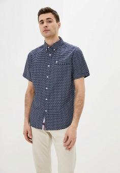 Рубашка, Nisko, цвет: синий. Артикул: NI033EMIRUN8. Одежда / Рубашки