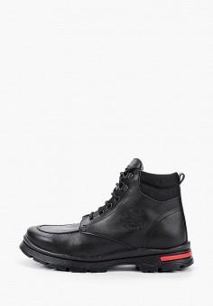 Ботинки, Pablosky, цвет: черный. Артикул: PA048ABCIJH2. Мальчикам / Обувь / Ботинки