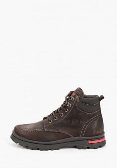 Ботинки, Pablosky, цвет: коричневый. Артикул: PA048ABKDLZ1. Мальчикам / Обувь / Ботинки